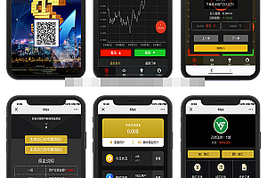 正版美元Max币圈源码,时间盘源码,外汇交易平台系统源码